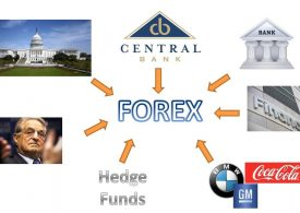 Market Players Participant In Forex Trading