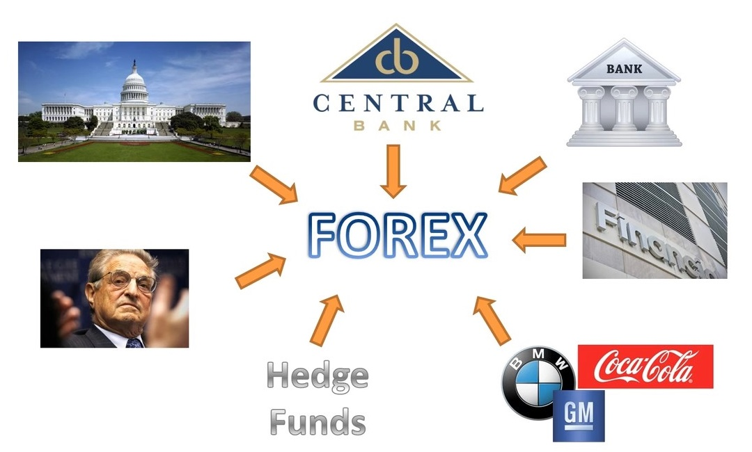Meet the 5 Major Players in the Global Forex Market :: countingpips
