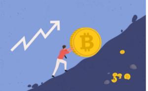 bitcoin rose
